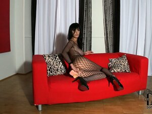 Sultry brunette in a fishnet bodysuit sticks a big dildo up her ass